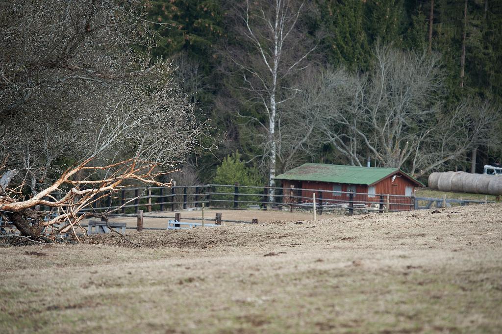 Domácí farma